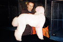 The Pink Poodle - Coronation Street