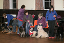 Dog Training with Eric Broadhurst at Dalry Town Hall, Dumfries and Galloway